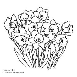 Free Printable Daffodil Spring flower coloring page
