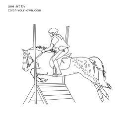 Appaloosa Cross Pony Jumping