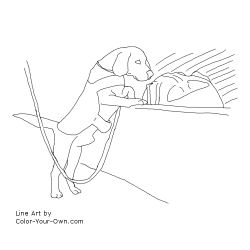 Airport Detection Dog - Beagle