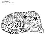 Sleeping Leopard Line Art