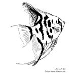 Freshwater Angelfish Line Art