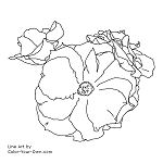 Easter Basket Rose Line Art
