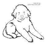 Newfoundland Puppy Line Art