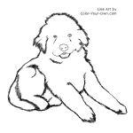 Newfoundland Puppy Line Art