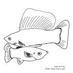 swordtail fish coloring pages - photo#8