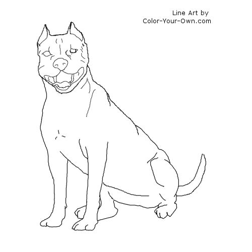 Line Art By Color Your Own : Pitbull drawings coloring pages