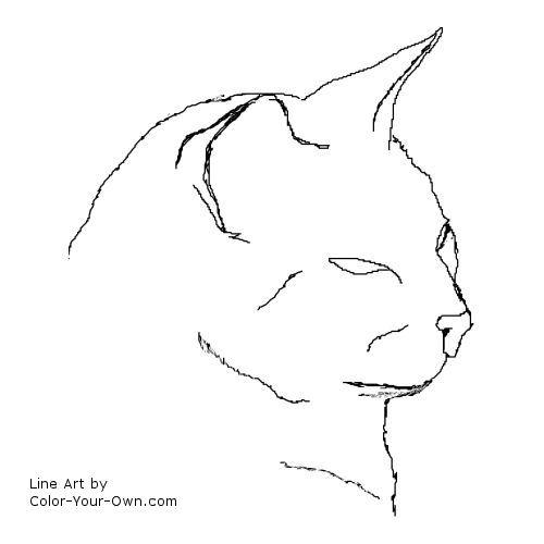 Siamese Cat Coloring Pages  Coloring Pages For Kids and All Ages