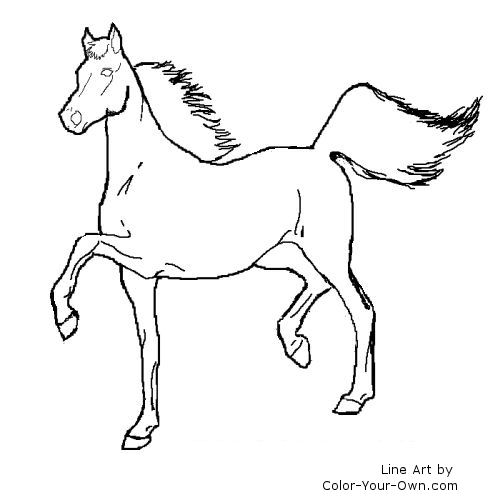 quarter horse coloring pages qurter horses free colouring pages