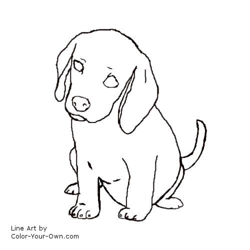 Free Beagle Pictures Coloring Pages Beagle Puppy Coloring Pages