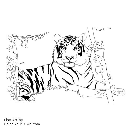 liger coloring pages - photo #14