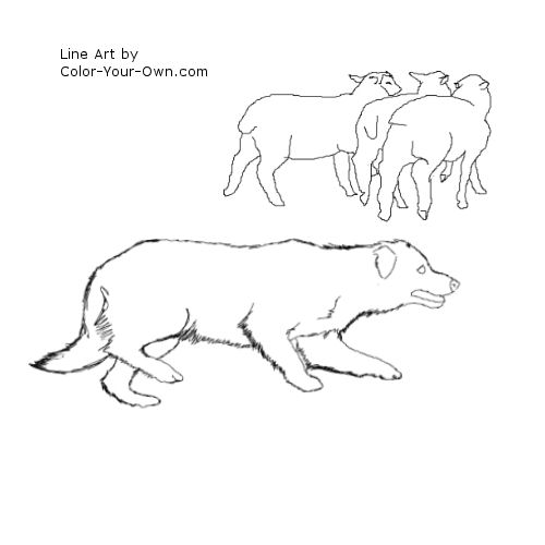 Border Collie Herding Sheep Line Art