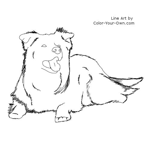 Border Collie Lying Down Line Art