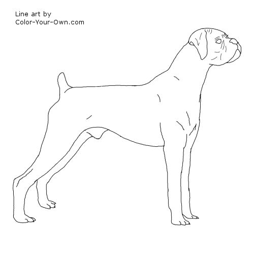 baby boxers coloring pages - photo #46
