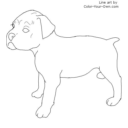 baby boxers coloring pages - photo #43