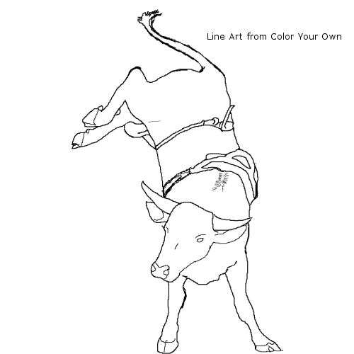 Bucking bull coloring page for Bucking bull coloring pages