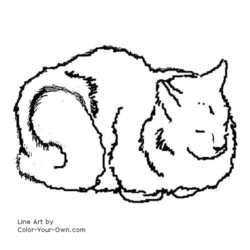 Line Art By Color Your Own : Domestic longhair cat coloring page
