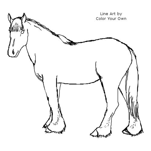 Clydesdale horse coloring pages ~ Clydesdale Horse Coloring Page
