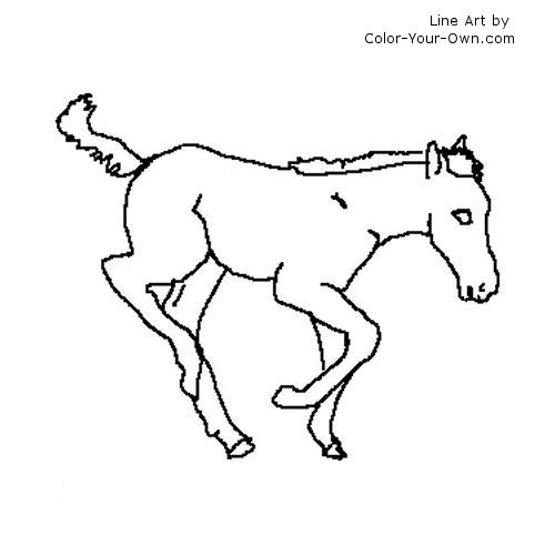 dancing foal coloring page