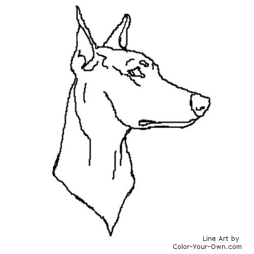 Doberman Drawing Colouring Pages Doberman Coloring Pages