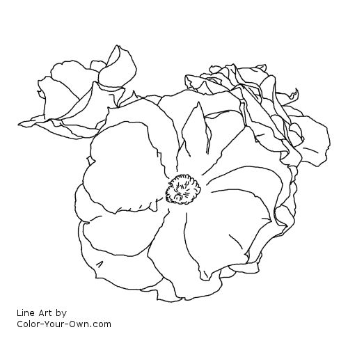 Line Art By Color Your Own : Easter basket rose coloring page
