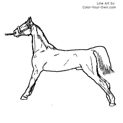 saddled horse coloring pages - photo#32
