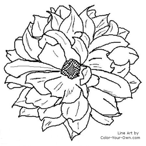 Dahlia Flower Line Drawing : Dahlia flower coloring page