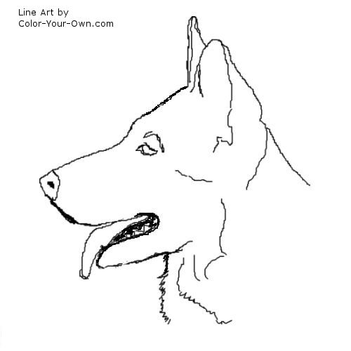 German Shepherd Coloring Pages  RedCabWorcester  RedCabWorcester