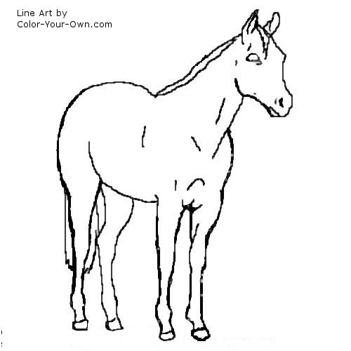 Ranch horses how stock your for sale colorado year old for Quarter horse coloring pages