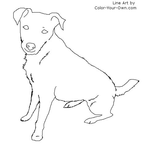 Sitting Jack Russell Terrier Line Art
