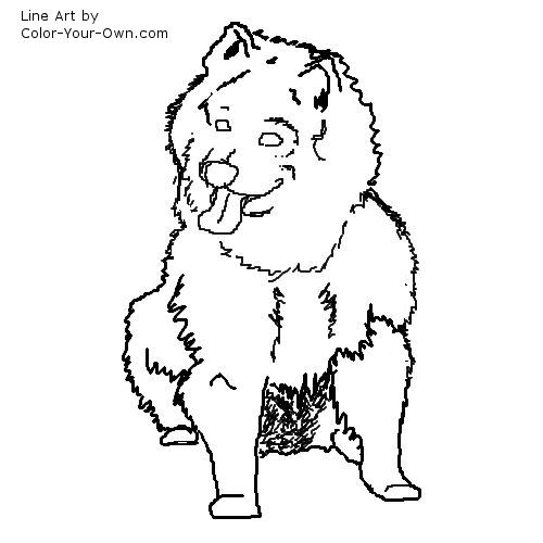 Dog - Japanese Spitz Line Art