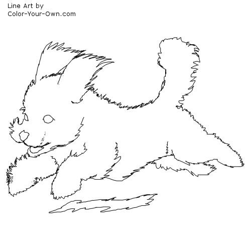 Line Art By Color Your Own : Bichon frise puppy coloring page