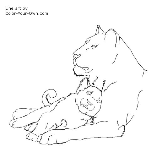 free lion cub coloring pages - photo#9