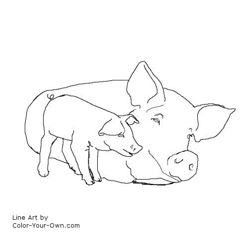 Sow and Piglet line art