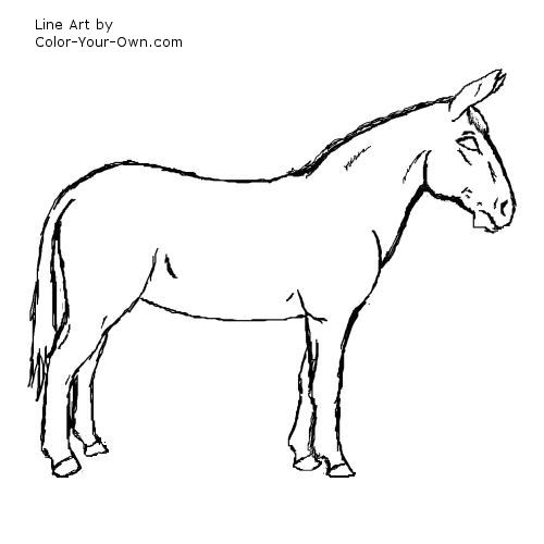 Line Drawing Donkey : Mule coloring page of outline a