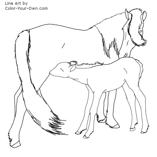 Newfoundland Pony Mare and Foal Line Art