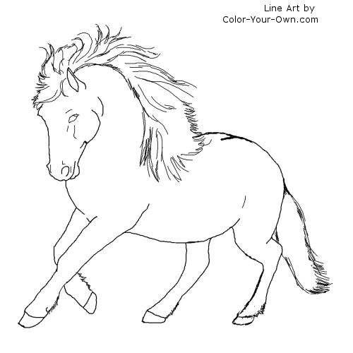 Newfoundland Pages Coloring Pages