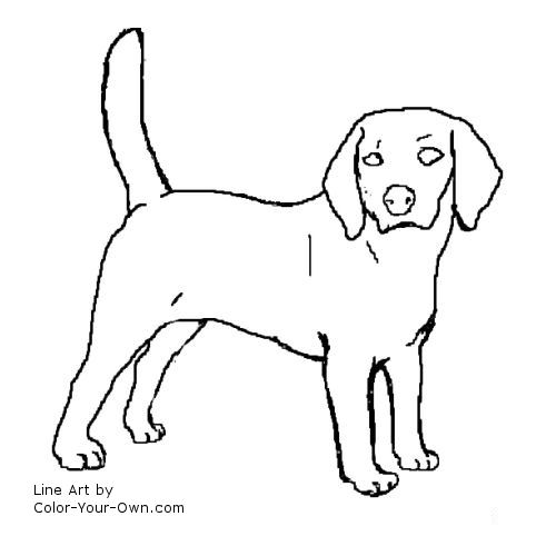 Beagle Dog Coloring Page Beagle Puppy Coloring Pages
