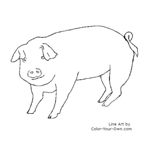 Piglet Line Drawing : Pig coloring page
