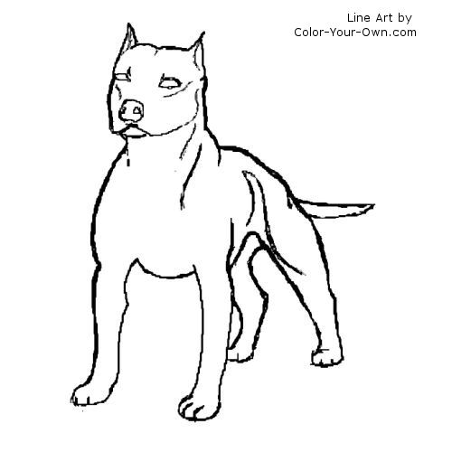 pit bulls coloring pages - photo#9