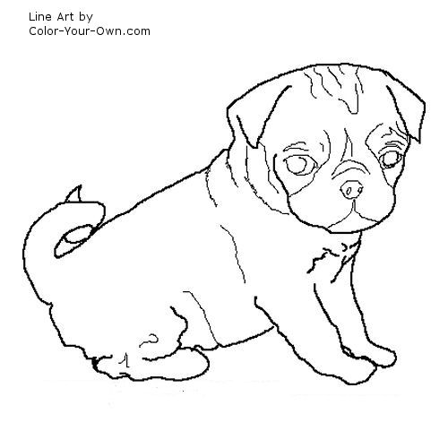 free pug coloring pages - photo#31