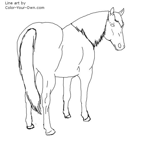 Quarter coloring page images sketch coloring page for Quarter horse coloring pages