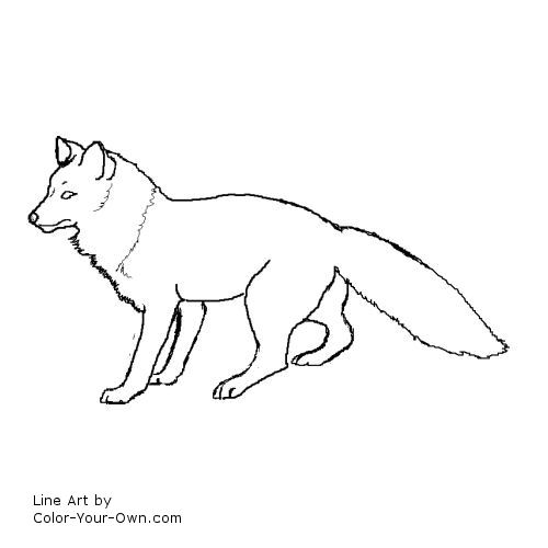 Red fox page coloring pages for Red fox coloring page