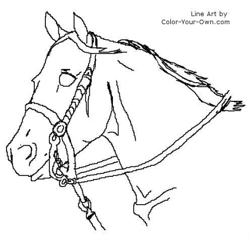 Tweet coloring pages blog newest additions main coloring for Quarter horse coloring pages