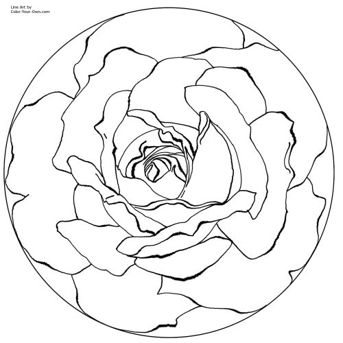 Rose Mandala Line Art