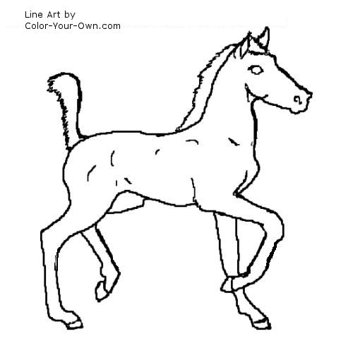 american saddlebred foal coloring page - Coloring Pages Horses Foals