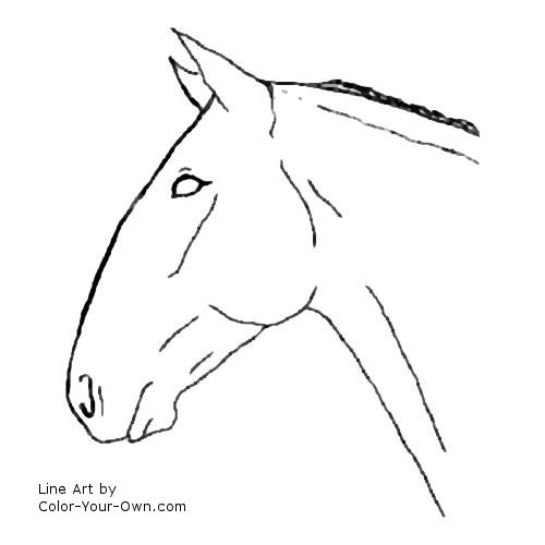 horse head coloring pages - photo#29