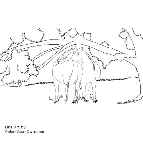 Line Art By Color Your Own : Horses under a shade tree coloring page