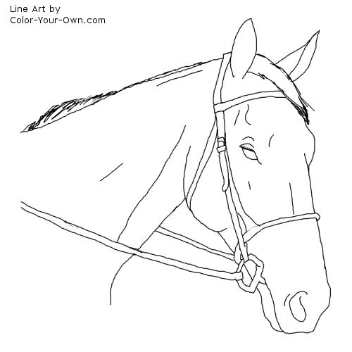 thoroughbred coloring pages - photo#6