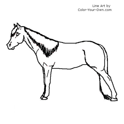 Tennessee Walking Horse Mare Coloring Pagerhcoloryourown: Walking Horse Coloring Pages At Baymontmadison.com