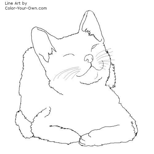 Line Drawing Kitten : Winking kitten coloring page